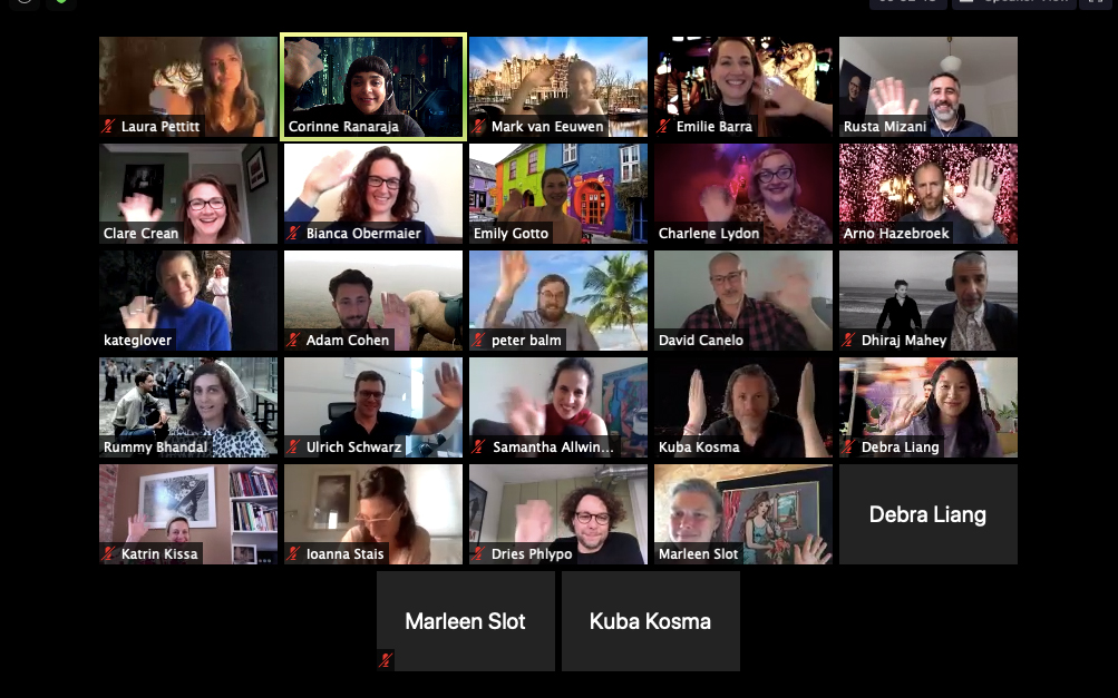The 20 participants of the 2020 programme on Zoom